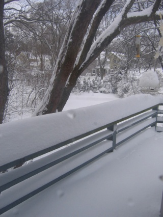 snow deck for blog